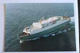 PORTO CARDO Compagnie Meridionale De Navigation - Fähren