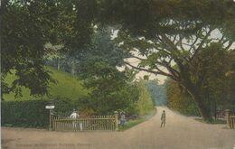 002821 - MALAYSIA - ENTRANCE TO BOTANICAL GARDENS,  PENANG - 1920 - Malaysia