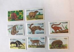 GUYANE 1992 8v Neuf ** Mi 3873 - 3880 Mammifère Mammal Mamífero Saügetier MNH GUYANA - Francobolli