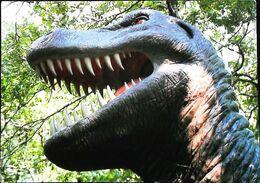 Zoo Préhistorique De Fontirou   Castella   Tyrannosaure - Non Classificati