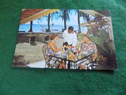 VINTAGE ANTILLES CARIBBEAN: BARBADOS The Coral Reef Club Colour - Barbados (Barbuda)