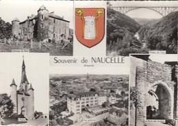 CP NAUCELLE 12 AVEYRON - SOUVENIR - MUTIVUES - BLASON - Other Municipalities