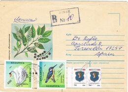 37633. Carta Certificada MINSK (Rusia) 1996 A Torruella (Gerona). Birds - 1992-.... Federation