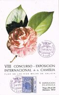 37642. Tarjeta Exposicion VIGO (Pontevedra) 1972. Exposicion De La CAMELIA, Flores, Flowers - 1931-Aujourd'hui: II. République - ....Juan Carlos I