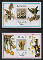 BELIZE - BLOCS YVERT N° 83 +85  ** MNH - ORCHIDEES / FLORE - Belize (1973-...)