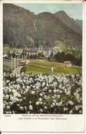 Suisse - Switzerland - Schweiz Vaud - Chemin De Fer Montreux Oberland Les Avants à La Fleuraison Des Narcisses - VD Vaud
