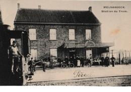 Melsbroeck. Station Du Tram - Steenokkerzeel