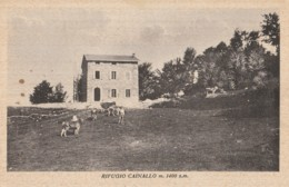 CARTOLINA VIAGGIATA RIFUGIO CAINALLO LECCO (KP1337 - Lecco