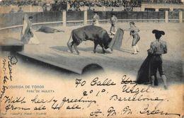 Spain Corrida De Toros Pase De Muleta Bull Fight Postcard - España