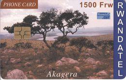 RWA-C-01 - Akagera - Rwanda