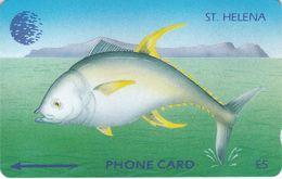 STH-10 - Tuna Fish - New Logo - 4CSHA - St. Helena Island