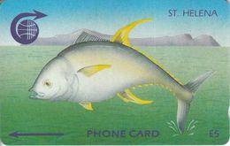 STH-07 - Tuna Fish - Original Logo - 3SCHB - St. Helena Island