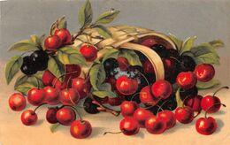 Cerises -  Kirschen - Flores, Plantas & Arboles