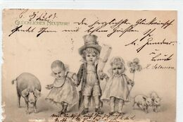 DC3660 - Glückliches Neujahr Berlin 1903 Kinder Schweine Klee - Año Nuevo