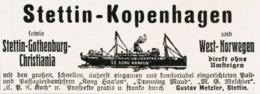 Original-Werbung/ Anzeige 1907 - STETTIN - KOPENHAGEN / GUSTAV METZLER - STETTIN - Ca. 90 X 35 Mm - Pubblicitari