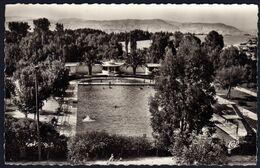 Taza La Piscine Et Paysage NB Années 50 Ed Cap écrite 20/09/1953 Plan Rare TB - Altri