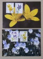 2019 France 2 Cartes 1er Jour Série La Flore Violette Saxifrace Dracocephale Faujasie Plaine Des Palmistes 17/05 - Cartoline Maximum