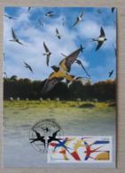 2019 France  Carte  1er Jour Les Oiseaux De Nos Régions  Paris 10/05 - Cartoline Maximum