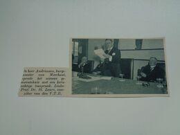 """Origineel Knipsel ( 6740 ) Uit Tijdschrift """"  De Stad """"  1936 :   Meerhout - Ohne Zuordnung"""