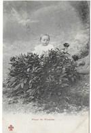 Bébé (fleur De Pivoine) (genre Bergeret) - Szenen & Landschaften
