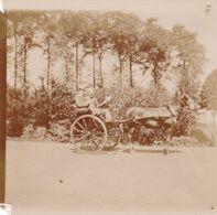 Photo Originale 1900  Château De Bouillon Baulers ? Famille Noblesse Attelage Calèche - Orte