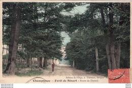 CHAMPROSAY FORET DE SENART ROUTE DE DRAVEIL 1930 TBE - Frankreich
