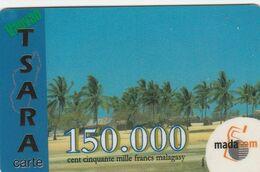 Madagascar - Vaovao Tsara - Palm Trees - Madagascar