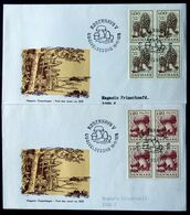 Denmark 1978 Mushrooms / Pilze / Champignons / Hongos   MiNr.673-74  FDC  ( Lot  Ks) MAGASIN COVER - FDC