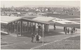 Foto AK - Wien - Wien Donaupark - WIG 1964 - Altri