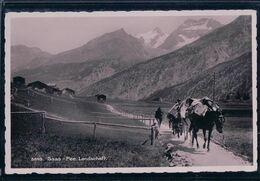 Saas-Fee VS, Landschaft, Transport à Dos De Mulets (5549) - VS Valais