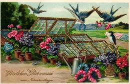 Namenstag, Blumen, Gärtnerei, Treibhaus, Schwalben, Um 1920 - Otros