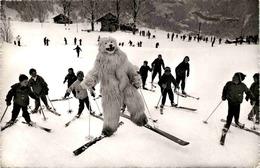 Grindelwald (1689) * 6. 3. 1961 - BE Berne