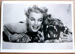 MARILYN MONROE SUR UNE PEAU DE TIGRE NORMA JEAN EN 1953 PHOTO BRUNO BERNARD - Actors