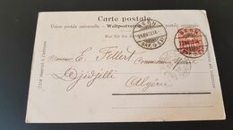 Bern - Sent To Djidjelli Algerie Algeria - Gebruikt