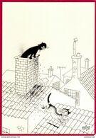 CPM Illustrateur  Dessin D' Albert Dubout  Chat Sur Un Toit  ( F6 - Dubout