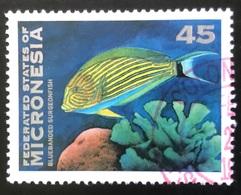 Federated States Of Micronesia - P2/62 - (°)used - 1993 - Michel Nr. 297 - Vissen - Micronesia