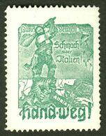 """Italia Südtirol Alto Adige ~ 1920 """" Schmach über Italien - Hand Weg """" Vignette Cinderella Reklamemarke - Erinnofilia"""