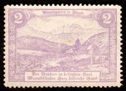 "Italia Südtirol Alto Adige ~ 1910 "" Bozen ( Bolzano ) Der Rosengarten "" Vignette Cinderella Reklamemarke - Erinnofilia"