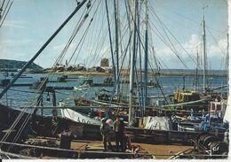 CPSM France 29 Finistère Camaret Le Sillon Vu Du Fond Du Port Bateaux De Pêche - Camaret-sur-Mer