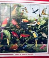 GUYANA 1990 20 V Neuf ** MNH Mi 3447 / 3466 Tropical Ucello Oiseau Bird Pájaro Vogel GUYANA - Altri