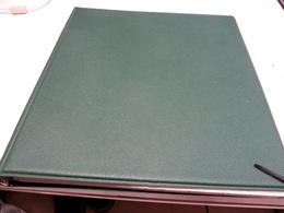 VATIKAN 1924/34 Bis 1972  Posten  ** /  MARKEN  Auf  LINDNER - FALZLOS - VORDRUCKTEX  Im RINGBINDER - Collections