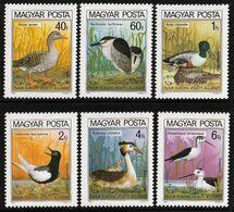 1980 Hungary Nature Protection Year: Birds Set And Souvenir Sheet (** / MNH / UMM) - Oiseaux