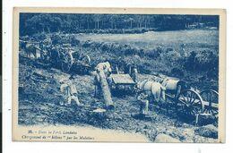 Landes Chargement De Billon Par Les Muletiers - Aquitaine