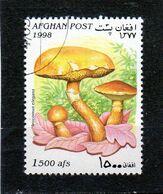 AFGHANISTAN   1998  Y.T. N° Champignons  Oblitéré - Afganistán