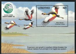 1993 Lesotho UN Earth Summit: West African Crowned Cranes Souvenir Sheet (** / MNH / UMM) - Grues Et Gruiformes