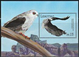 2001 Lesotho Black-winged Kite Souvenir Sheet (** / MNH / UMM) - Aigles & Rapaces Diurnes