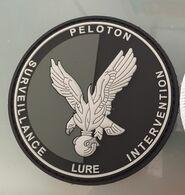 écusson Plastique PSIG LURE Armée Gendarmerie Obsolete Pour Collectionneur - Basse Visibilité - Noir Et Gris - Police