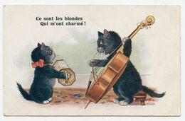 Florence House Barnes.animaux Humanisés.petits Chats Noirs.musique .musicien. - Chats