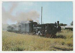 80 LE CROTOY Plage N°82 Le Petit Train Touristique Ligne Noyelles Le Crotoy Locomotive à Vapeur - Le Crotoy