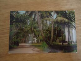 SEYCHELLES  POSTCARDS  LANDSCAPES  2 SCAN - Seychelles